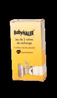 Babyhaler, Bt 2 à BRIÉ-ET-ANGONNES