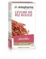 Arkogélules Levure De Riz Rouge Gélules Fl/45 à BRIÉ-ET-ANGONNES