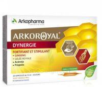 Arkoroyal Dynergie Ginseng Gelée Royale Propolis Solution Buvable 20 Ampoules/10ml à BRIÉ-ET-ANGONNES