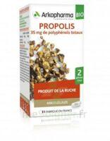 Arkogélules Propolis Bio Gélules Fl/45 à BRIÉ-ET-ANGONNES