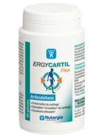 Ergycartyl Flex Gélules Pot/90 à BRIÉ-ET-ANGONNES
