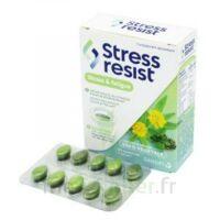 Stress Resist Comprimés Stress & Fatigue B/30 à BRIÉ-ET-ANGONNES