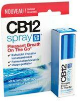 Cb 12 Spray Haleine Fraîche 15ml à BRIÉ-ET-ANGONNES