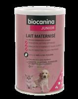 Biocanina Lait Poudre Maternisé B/400g à BRIÉ-ET-ANGONNES