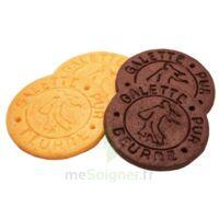 Protibis Hp-hc Galette Cacao B/16 à BRIÉ-ET-ANGONNES