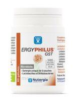 Nutergia Ergyphilus Gst Gélules B/60 à BRIÉ-ET-ANGONNES